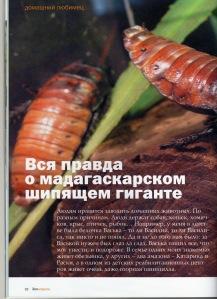"""журнал """"Зооновости"""""""