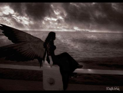 wings dark